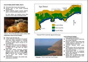 gokceada deniz parki tudav